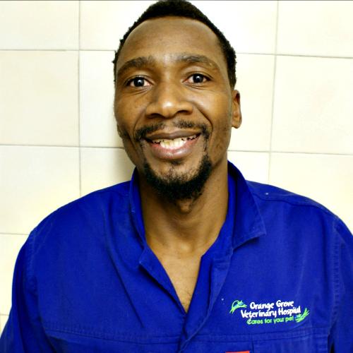 Henry Mpofu : Vet Assistant