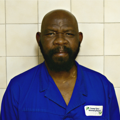 Mike Mpofu : Vet Assistant