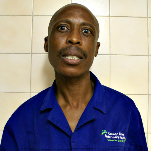 Simon Motshabi : Vet Assistant