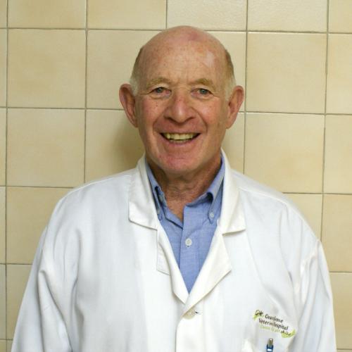 Dr Brian Romberg : (B.V.Sc (Hons) (Surg))